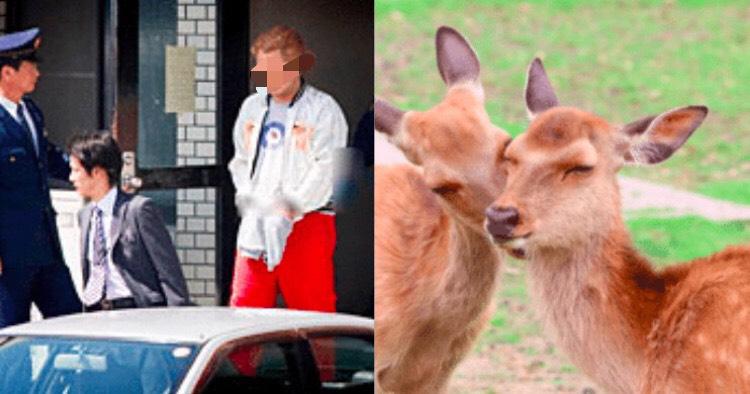 吉井勇人(23)の顔画像!奈良公園で鹿を刃物(斧)で殺害,インスタ(instagram)、tiktok,facebook,フェイスブック